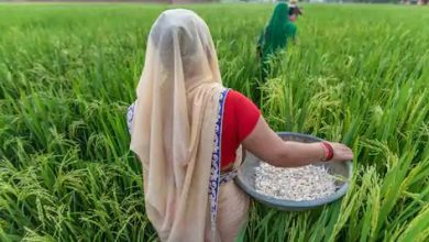 Photo of Corporatisation of the Indian Agricultural Sector