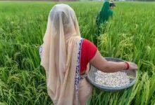 Photo of किसान कानून पर सरकारी जिद