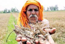 Photo of खेती की व्यवस्था विकेंद्रित होनी चाहिए